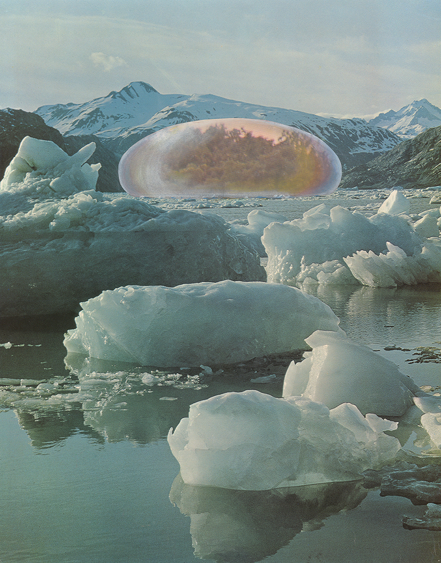 Juan Navarro Baldeweg, A Tropical Forest in an Arctic Landscape. Application of a Climate Control System, 1972.
